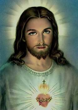 Image result for No Imperfections in Humanity of Jesus